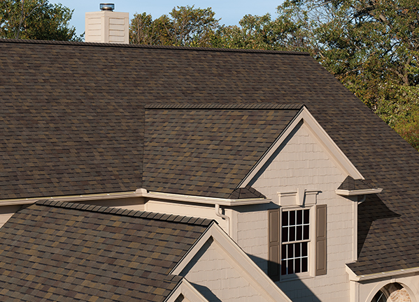 Trudefinition Duration Shingles Color Collection Available In Your Area